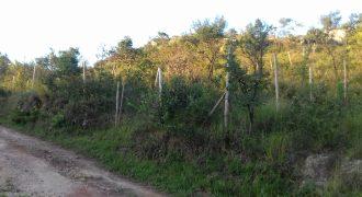 COD: 046 – Lote no Bairro São Pedro