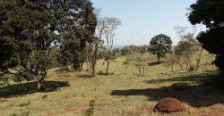 COD: 002- Fazenda Presidente Kubitschek