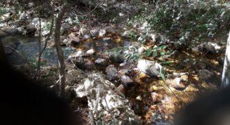 COD: 035- Terreno Rural à Venda à 8 km de São Gonçalo do Rio Preto- 65,00 hectares